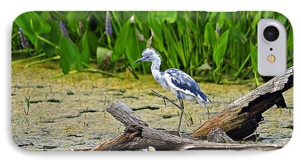 Hooligan Heron Phone Case by Al Powell Photography USA