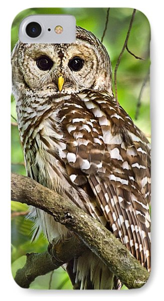 IPhone Case featuring the photograph Hoot Owl by Christina Rollo