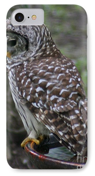 IPhone Case featuring the painting Hooty Bath by Jimmie Bartlett