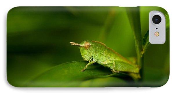Grasshopper iPhone 7 Case - Hopper by Shane Holsclaw