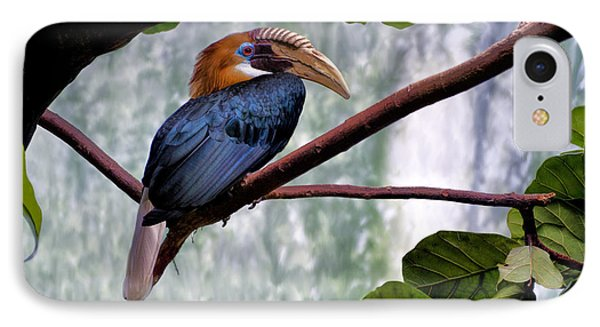 IPhone Case featuring the photograph Hornbill In Paradise by Adam Olsen