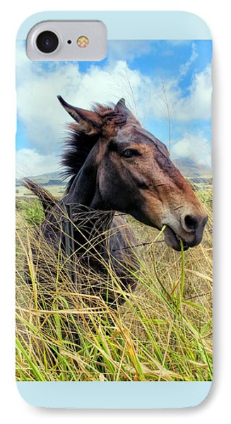 IPhone Case featuring the photograph Horse 6 by Dawn Eshelman