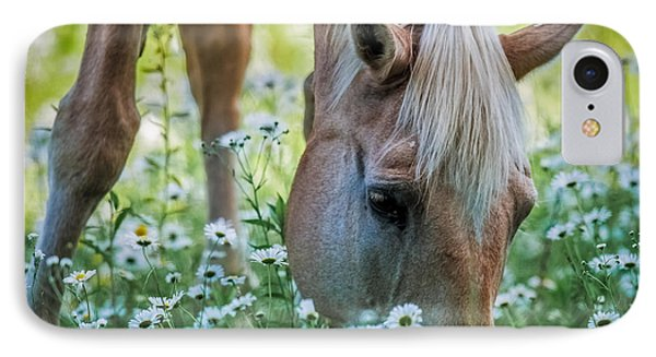 Horse And Daisies IPhone Case by Paul Freidlund