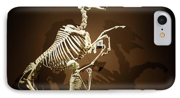Horse And Human Skeletons Exhibit IPhone Case