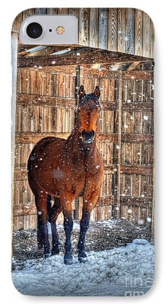 Horse And Snow Storm Phone Case by Dan Friend