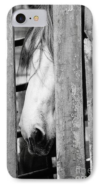 Horse Board 3 IPhone Case