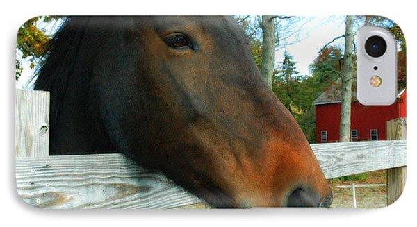 Horse IPhone Case by Bruce Carpenter