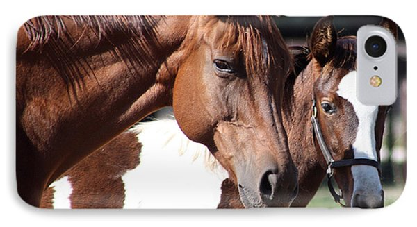 Horse Buddies IPhone Case by MaryAnn Barry