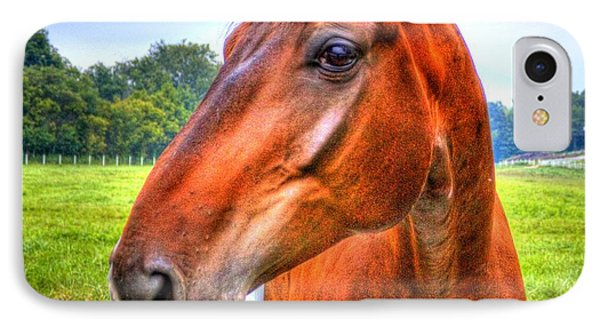 Horse Closeup IPhone Case by Jonny D