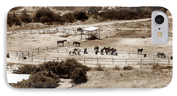 Horse Farm At Kourion Phone Case by John Rizzuto