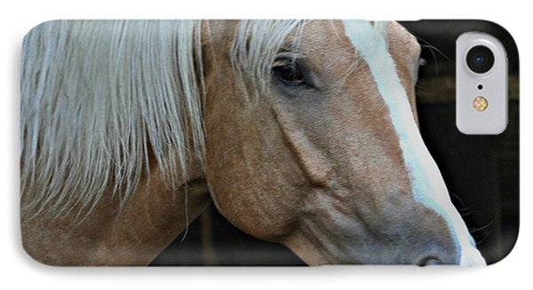 Horse Feathers IPhone Case by Barbara S Nickerson