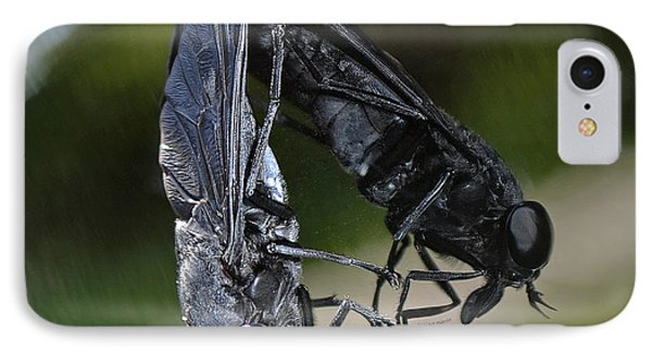 IPhone Case featuring the photograph Horse Fly by DigiArt Diaries by Vicky B Fuller