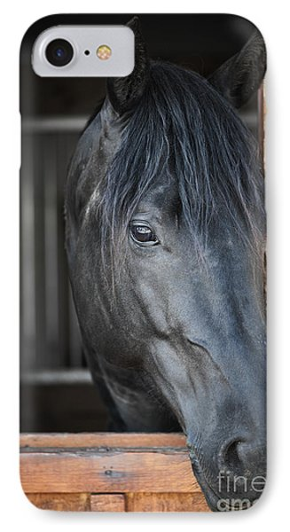 Horse In Stable Phone Case by Elena Elisseeva