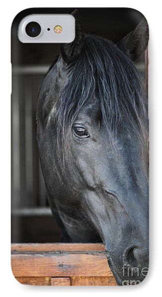 Horse In Stable IPhone Case