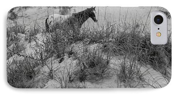 Horse In The Dunes IPhone Case