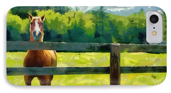 IPhone Case featuring the painting Horse In The Field by Jeff Kolker