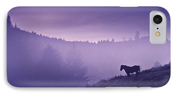 Horse In The Mist IPhone Case by Yuri Santin