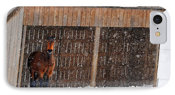 Horse Looking At Snow Storm Phone Case by Dan Friend