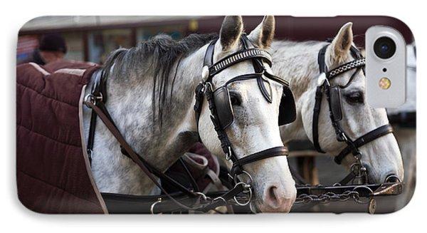Horse Portrait In Vienna Phone Case by John Rizzuto