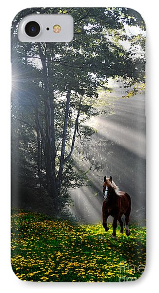 Horse Running In Dandelion Field With Streaming Sunlight Phone Case by Dan Friend