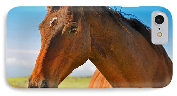 Horse IPhone Case by Sabine Edrissi