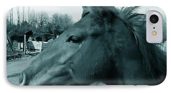 Horse Sense Phone Case by Steven Milner