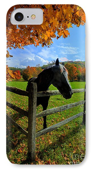 Horse Under Tree By Fence Phone Case by Dan Friend