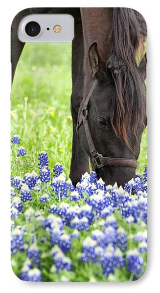 Horse With Bluebonnets IPhone Case