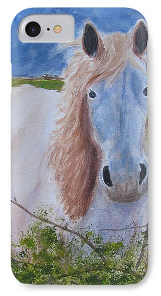 Horse With Stormy Skies Phone Case by Dawn Dreibus