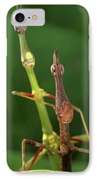 Grasshopper iPhone 7 Case - Horsehead Grasshoppers by Tomasz Litwin