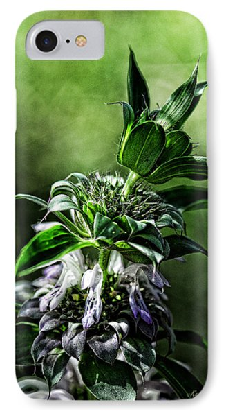 Horsemint IPhone Case