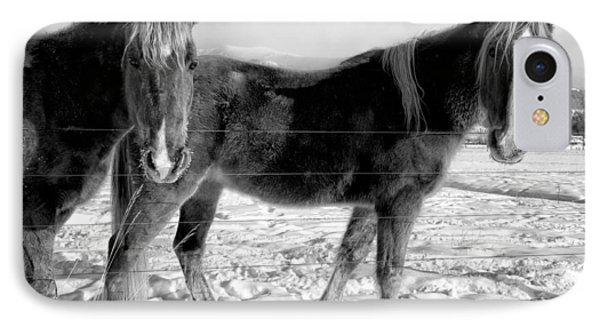 Horses In Winter Coats IPhone Case by Joan Herwig