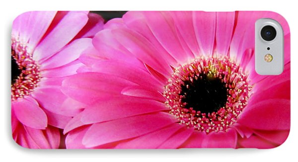 Hot Pink Gerber Daisies Macro IPhone Case by Danielle  Parent