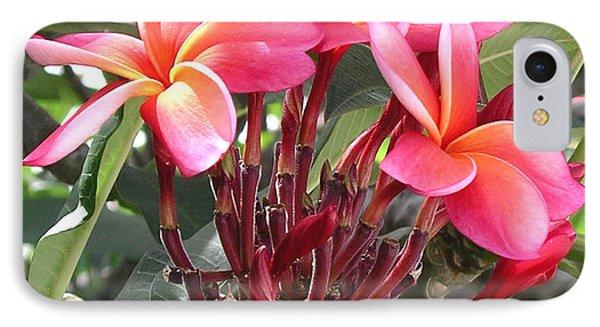 Hot Pink Plumeria IPhone Case by Karen Nicholson