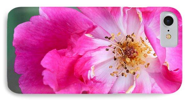 Hot Pink Rose Phone Case by Sabrina L Ryan