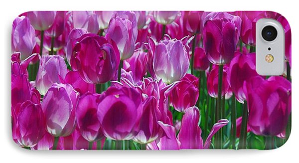 Hot Pink Tulips 3 IPhone Case by Allen Beatty