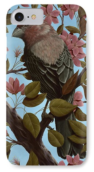 House Finch IPhone Case by Rick Bainbridge