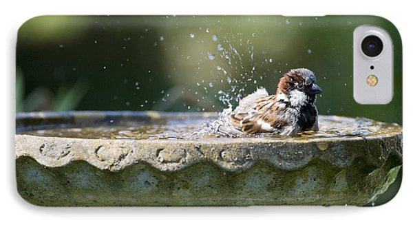 House Sparrow Washing IPhone Case
