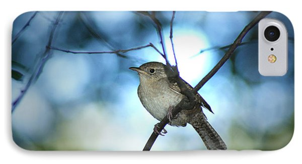 House Wren On Blue IPhone Case