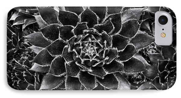 Houseleek Monochrome IPhone Case by Tim Gainey