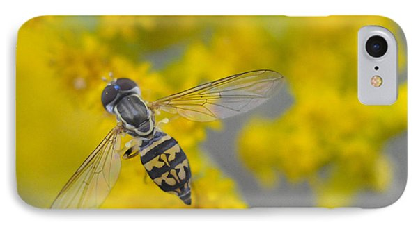 Hover Fly On The Goldenrod IPhone Case