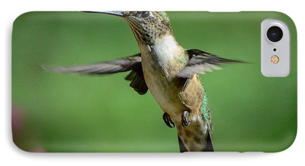 Hovering Hummer IPhone Case by Amy Porter