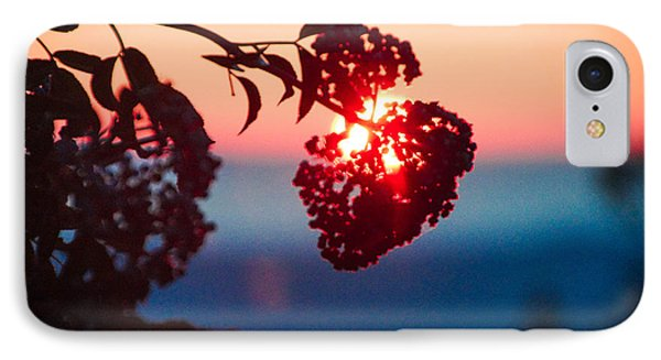 Huckleberry Sunset IPhone Case