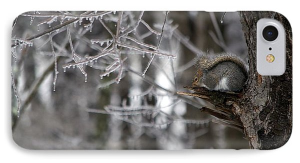 IPhone Case featuring the photograph Huddled Down by Sandy Molinaro