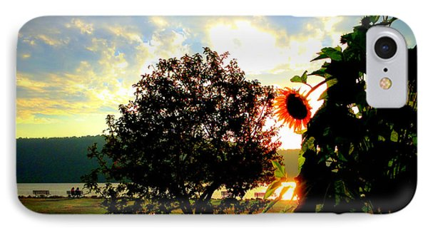 IPhone Case featuring the photograph Hudson River Sunflower by Aurelio Zucco