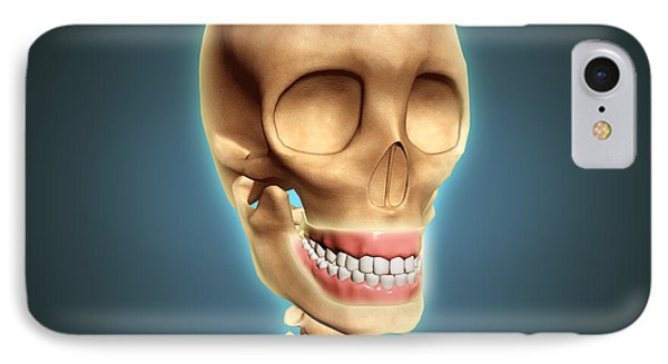 Human Skeleton Showing Teeth And Gums Phone Case by Stocktrek Images