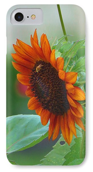 IPhone Case featuring the photograph Humility Of A Sunflower by Jeanette Oberholtzer
