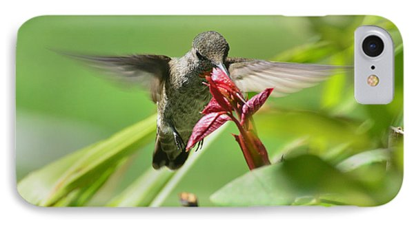 IPhone Case featuring the photograph Hummer At The Rose by Debby Pueschel