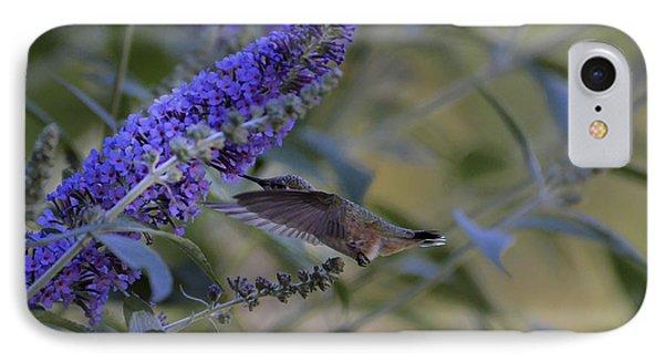 Humming Bird Green- Butterfly Bush IPhone Case