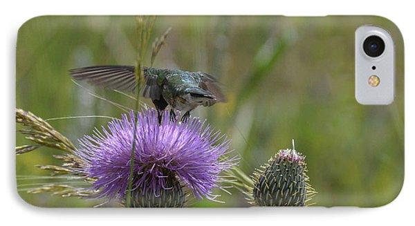 Hummer-hbthistle-posterior IPhone Case